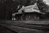 Abandoned Railway Station (Elton Pelser) Tags: bw blackwhite trainstation mono greyscale nikon d3400 traintracks building railway monochrome