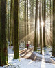 🌍 Golden Ears Provincial Park, British Columbia, Canada |  Christian Schaffer (travelingpage) Tags: travel traveling traveler destinations journey trip vacation places explore explorer adventure adventurer