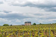 Route du Champagne, France (George Pachantouris) Tags: champagne wine sparklingwine region france wineyards grape