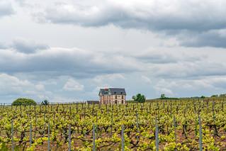 Route du Champagne, France