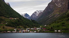 Undredal a village on the Sognefjorden, Norway (clive_metcalfe) Tags: fredolsen houses norwegian breamar boat tree fjord cruise