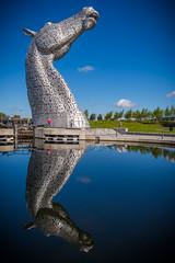Reflection (G. Warrink) Tags: visitscotland scotland alba scotspirit scotlandsbeauty thisisscotland hiddenscotland lovescotland findingscotland beautiful horses sculpture lock falkirk kelpies canal horse strength pride