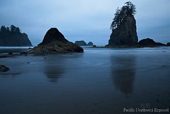The Blue Hour 9560 (All h2o) Tags: blue hour ocean sea coast beach rock water sky stack pacific northwest sand waves olympic national park second landscape sunset peninsula la push