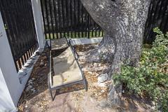 IMG_2383 (ellejayedee) Tags: keywest florida tropical beach hemingway cats vacationsunset fishing boats islandlife historythekeys ocean gulfofmexico
