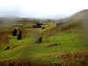 Rano Raraku, la cantera de los moais. Isla de Pascua. Chile (escandio) Tags: chile islapascua pacifico pascuainterior ranoraraku isladepascua 2018