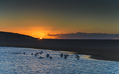Sun Rising at the Lagoon (Merrillie) Tags: daybreak wamberalbeach sand sunrise sun nature australia morning surf sea wamberal centralcoast newsouthwales waves earlymorning nsw seagulls beach ocean lagoon sky landscape coastal seascape outdoors waterscape dawn coast water seaside