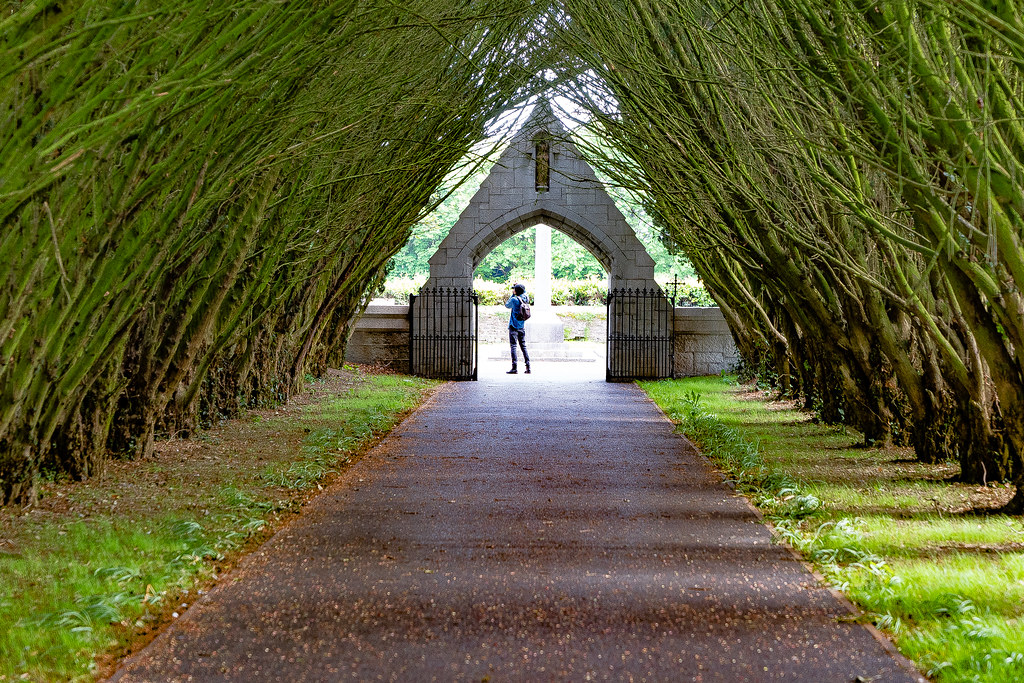 THE ENTRANCE TO ST. PATRICK'S COLLEGE CEMETERY IN MAYNOOTH [SONY A7RIII IN CROP SENSOR MODE]-139532