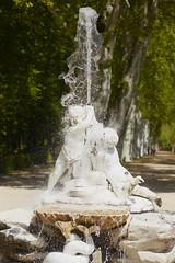 Splash!!! (jdelaobra) Tags: garden jardin fountain fuente aranjuez water agua monument