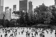 Cooler Days (Phil Roeder) Tags: newyorkcity nyc manhattan blackandwhite monochrome centralpark wollmanrink icerink skate