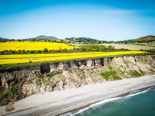 Dublin Ireland Rapeseed Fields