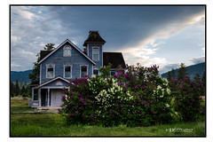 Nicola Ranch Lilacs (Bruce Walter) Tags: nicolaranch exploremerrittbc exploremerritt merritt lilacs beautifulbc oldhouse heritagehouse clouds dramatic