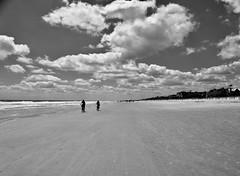 Coligny Beach Hilton Head South Carolina (Meridith112) Tags: colignybeach beach shore sand sc southcarolina south carolinas lowcountry beaufortcounty blackandwhite bw clouds cloud ocean atlanticocean water man people hh hiltonhead bike bikes april 2018 spring nikon nikon2485 nikond610