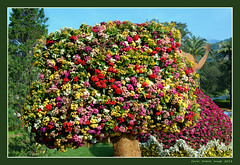Euroflora - 37 (cienne45) Tags: euroflora euroflora2018 flaralies internationalflowershows parksofnervi nervi genova genoa genovanervi fiori flowers carlonatale cienne45 natale exhibition floralie italy