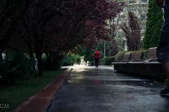 After the storm (cristian.munteanu07) Tags: sony a6000 bucharest storm street stphotographia sun light water reflection rain urban goldenhour vigneting cmvisualisation vanishingpoint
