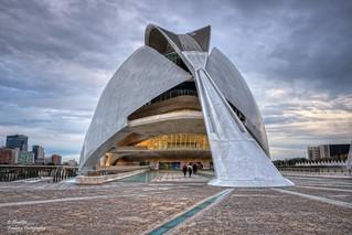 Palau de les Arts Reina Sofia (CAC) (I). València
