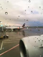 (Cjin99) Tags: boston massachusetts unitedstates us ma bos bostonloganairport boeing aircraft airplane transportation unitedairlines summer ua2400 n775ua b777200 b777222