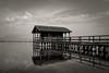 The fisherman's hut (Tilemachos Papadopoulos) Tags: qoq water fuji fujifilm fujinon outdoor mono monochrome contrast horizon sky sea fisherman greece lake xe2 clouds bw blackandwhite mirrorless lagoon messolongi