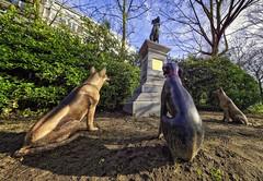 Guillaume Bijl Beaufort (glessew) Tags: beaufort dog chien hund hond statue beeld sculpture beelhouwwerk beeldengroep park oostende vlaanderen westvlaanderen belgië belgique leopoldpark guillaumebijl