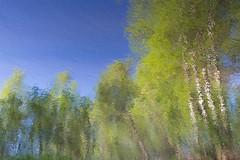 Keravanjoki water reflections upside down (darker exposure) (talaakso) Tags: finland heijastus hyvinkää keravanjoki nikkor28300 nikond610 terolaakso vedenpinta waterreflection heijastukset landscape landskap naturelandscape reflexion talaakso water watersurface finnishlandscape naturephotograph nature naturephoto