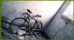 Took out the servant's quarters, and my bicycle. (BarbaraBonanno BNNRRB) Tags: abandonedarchitecture bike bicicletta colonia ettoremotta marinadimassa architetturafascista aschitettura fascismo httpwwwtotallylosteuspacecoloniaettoremotta bicycles blackwhite vélocipède decay abandoned barbarabonanno bonannobarbara bnnrrb bybarbarabonanno photo foto onlybike noperson