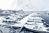 Boat trip...anyone? (Andrew Bloomfield Photography) Tags: lofoten islands andrewbloomfieldphotography fujifilm landscape norway outdoor winter xphotographer wwwandrewbloomfieldphotographycouk boats harbour snow lofotenislands snowing
