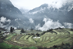 Bhutan: Terrace Farming. (icarium82) Tags: bhutan travel canoneos5dmarkiv sonydscrx1rm2 architecture canonef1635mmf4l captureone clouds farmhouse green gasavalley layers leefilters mountains mystical mysterious nature rural sundaylights