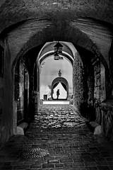 entrance to the castle (heinzkren) Tags: schwarzweis blackandwhite bw sw monochrome gang eingang gewölbe panasonic lumix silhouette corridor arch old castle burg composing street streetphotography