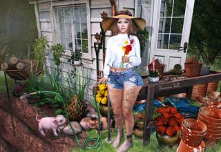 {Blog 335} The Gardener