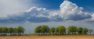 Beautiful landscape 5011