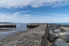 BRAY HARBOUR [AT LOW TIDE]-138946 (infomatique) Tags: bray countywicklow lowtide boats yachts april 2018 streetsofireland holidayresort touristdestination williammurphy infomatique fotonique sony