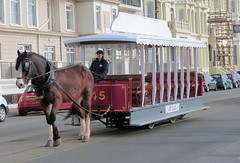 Douglas Bay Horse Tramway, Isle of Man - Steve hauls newly referbished No. 45 along Queens Promenade with the 9.20 from Derby Castle to the Sea Terminal on the 11th April 2018 (trained_4_life) Tags: iom isleofman douglas steve horse horsetram queenspromenade douglasbayhorsetramway