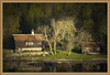 Woodland Hideaway(Sweden) (williamwalton001) Tags: pentaxart plants water woodlands trees texture timber tones sweden buildings borders landscapephoto colourimage