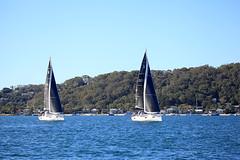 _MG_0302 (flagstaffmarine) Tags: sydney nsw aus beneteau pittwater regatta 2018 flagstaff marine