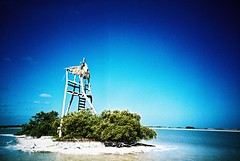 Río Lagartos (cranjam) Tags: lomo lca lomography film slide xpro expired kodak elitechrome100 mexico messico ríolagartos yucatán reservadelabiosferaríalagartos mangroves mangrovie lagoon laguna ríalagartosbiospherereserve birdwatching