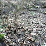 160 - AIGLE Wellworn Wellies filled with mud ( Rubberboots Gummistiefel Laarzen thumbnail