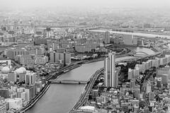 Tokyo City (eliseteshiraishi) Tags: japan landscape skytree tokyo torrederádio torredetóquio tóquiocapital atrações blackandwhite daytime observação outdoor postcard sky travel árearesidencial sumidaku tōkyōto japão