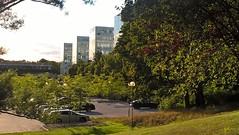 Kvällssol på södra husen (Linzen004) Tags: stockholmsuniversitet