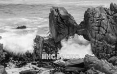 Unwavering Love 海枯石烂 (HelenC2008) Tags: monterey perkinspark pacificgrove rocks nikon d810