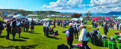 Scotland the massive Gourock Highland Games 13 May 2018 by Anne MacKay (Anne MacKay images of interest & wonder) Tags: scotland gourock highland games landscape 13 may 2018 picture by anne mackay