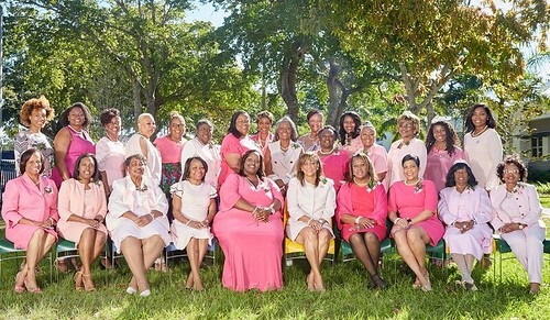 Executive Committee ( Shades of Pink)