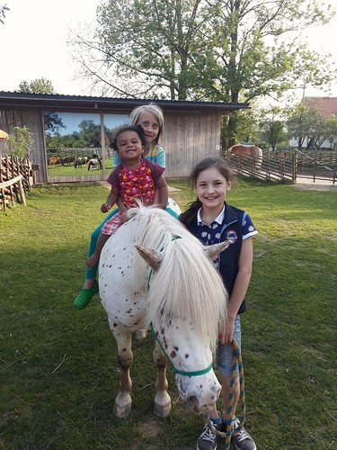 Pony reiten mit Romeo