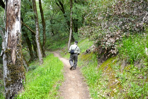 Ali hiking on a Live Oak trail, Portola hills
