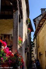 Per le vie di S. Giulio (Gian Floridia) Tags: isolasgiulio ortasgiulio fiori logge tetti viuzze isolasangiulio piemonte italy it