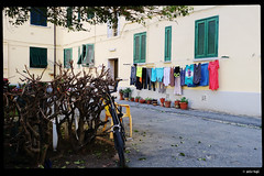 IMG_20180507_163231.jpg (explore) (anto-logic) Tags: stenditoio pannistesi drying clotheshanging finestre condominio case abitazioni cortile home condo windows houses courtyard homes domenica passeggiata walking walkmuro wall muri walls mattoni bricks mattone brick livorno toscana bicicletta bicycle sedia chair officina fiori piante aria aperta lbertà libero bello puntodivista profonditàdicampo fence gardens green plants outdoors liberty lovely free pointofview depthoffield pov focus bokeh relax relaxed gorgeous nice pretty perfect leica huaweip20pro
