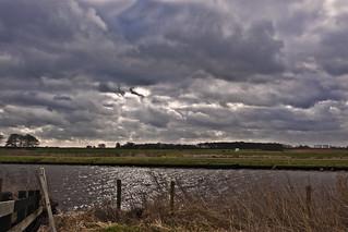 Frysian landscape near Mildam ... (6194)