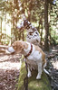 Woodland walk with Fin and Po (Odd Jim) Tags: dalmatian beagle woods woodland dogs dog canon6d 35mm canon35mmf2