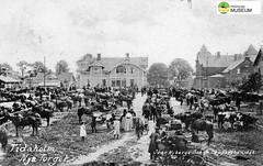 tm_7456 - Nya Torget, Tidaholm (Tidaholms Museum) Tags: svartvit positiv tidaholm torg 1913 marknad häst hästkärra