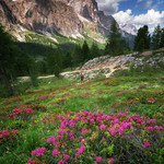 Summer in the Dolomites thumbnail