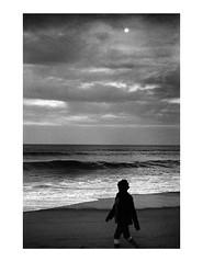 untitled by Brendan   Toews - Leica M7 Leica Summilux 50mm f/1.4 ASPH Ilford HP5