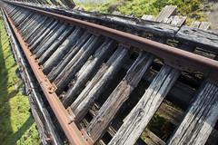 trestle (eb78) Tags: ca california northbay marincounty greenbrae northwesternpacificrailroad nwprr abandoned decay traintracks